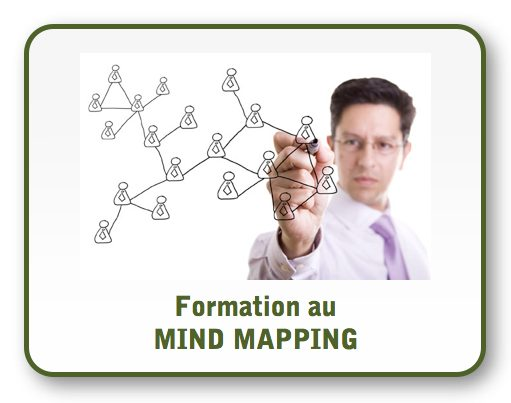 formation mind mapping, se former au mind mapping, specialiste mind mapping, comment faire un mind mapping, carte euristique